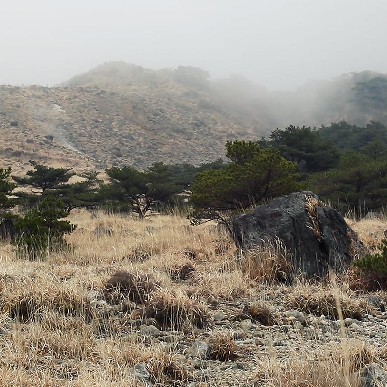 霧の霧島、えびの高原。